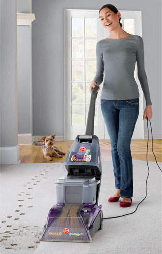 best carpet cleaner under 150