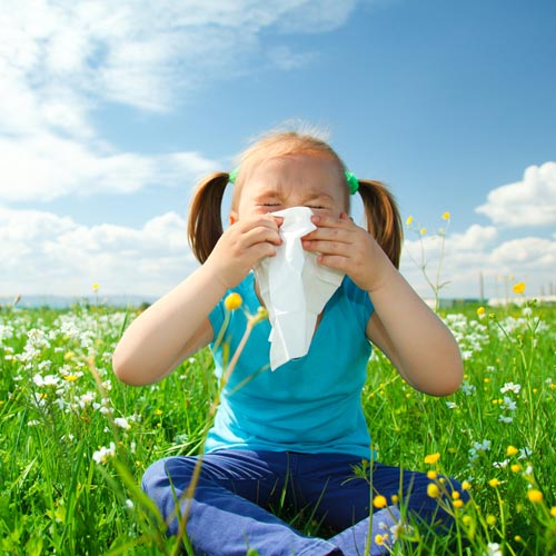 Help Preview and Test Cleaning Tips for Allergy Prevention